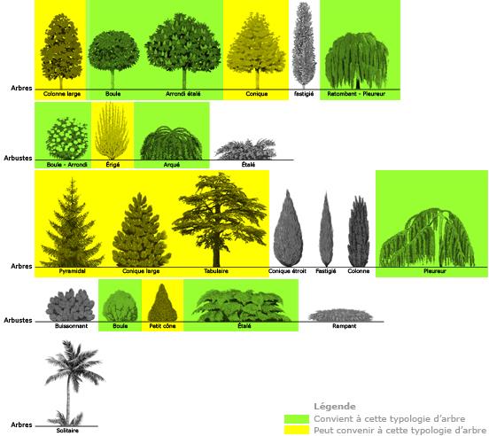 formes_arbres eclairage illumination parachute cheminee