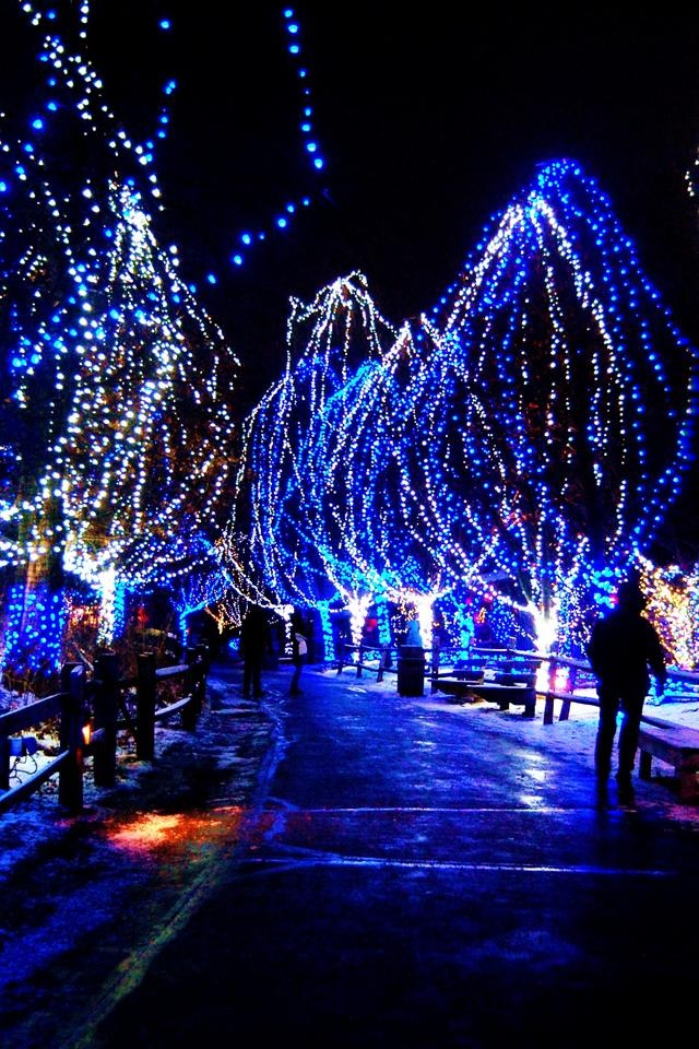 illuminations arbres style montgolfiere